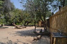 Namibian camp site with plenty of space